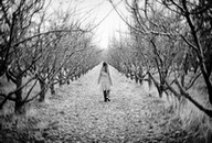 lonely woman in the orchard